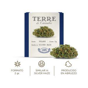 Flores de CBD Cannabis light cogollos Volare Silver Haze CBD Cannabidiol