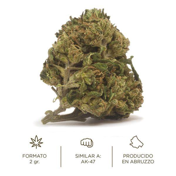 Flores de CBD cogollos Cannabis light Perla AK-47 Cannabidiol