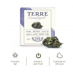 Briosa o Jack Frost CBG es una variedad de Cannabis light con Cannabigerol,