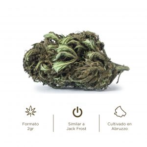 Flores de CBD cogollos Cannabis light Briosa Jack Frost CBG Cannabigerol