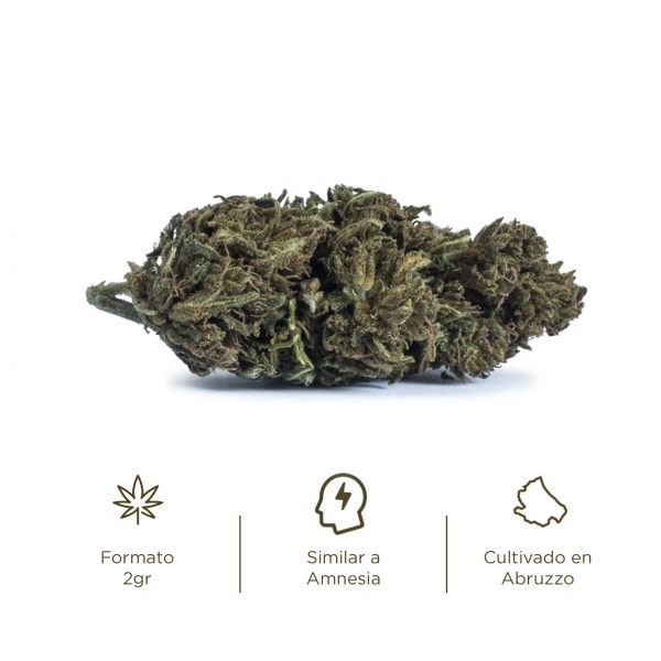 Flores de CBD cogollos Cannabis light Diva Amnesia CBD Cannabidiol
