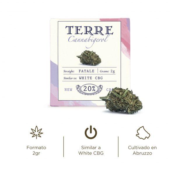 Flores de CBD Cannabis light Fatale White CBG Cannabigerol